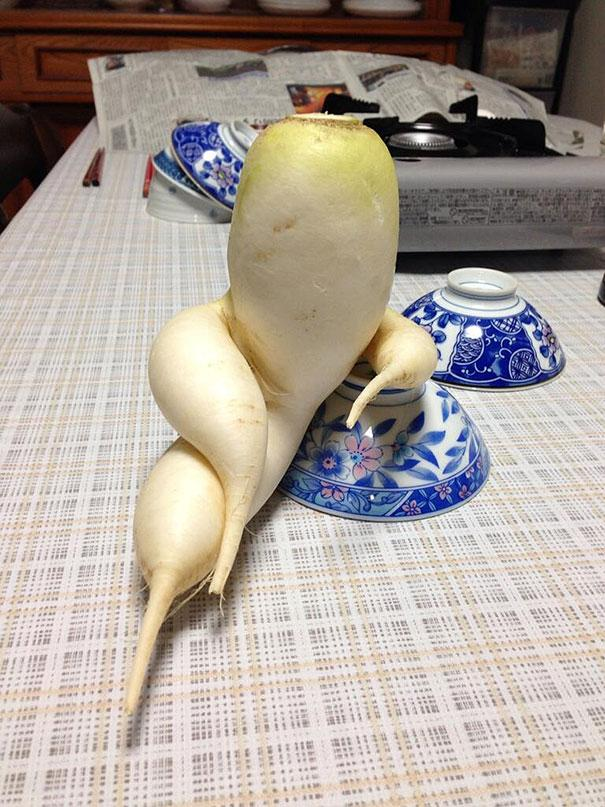 funny-shaped-vegetables-fruits-1